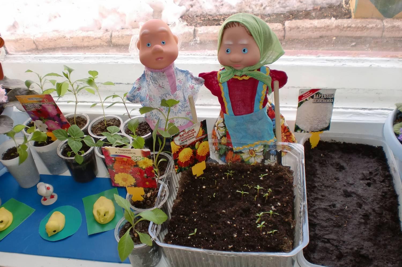 Выращивание растений в помещении, теплицах 85